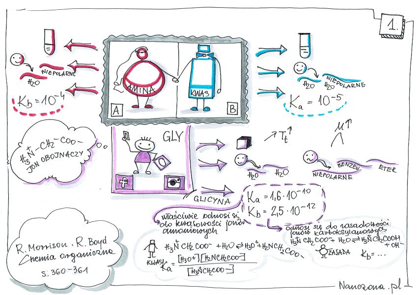notatka graficzna z chemii